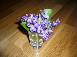 Vackra violer