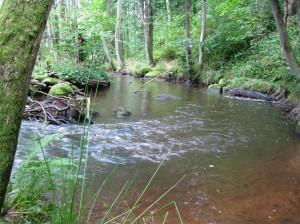 Virvlande vatten
