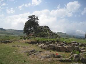 Sardinien 20100609-16 046